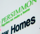 persimmon20_098_web